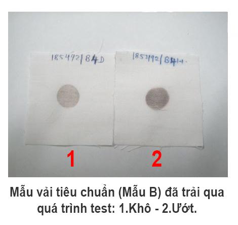 Mẫu vải tiêu chuẩn (Mẫu B)  đã trải qua quá trình test đang đợi khô để kỹ thuật viên đánh giá mẫu.