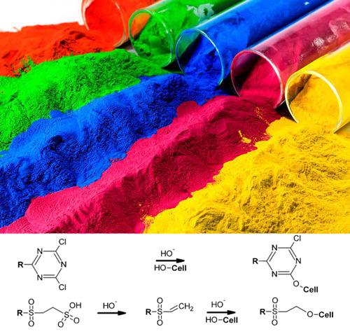Thuốc nhuộm hoạt tính là loại thuốc nhuộm phổ biến trong việc nhuộm cellulose