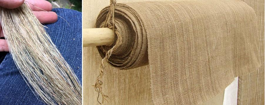 Sơi làm từ xơ cây tầm ma được dệt thành vải sử dụng trong ngành công nghiệp dệt may